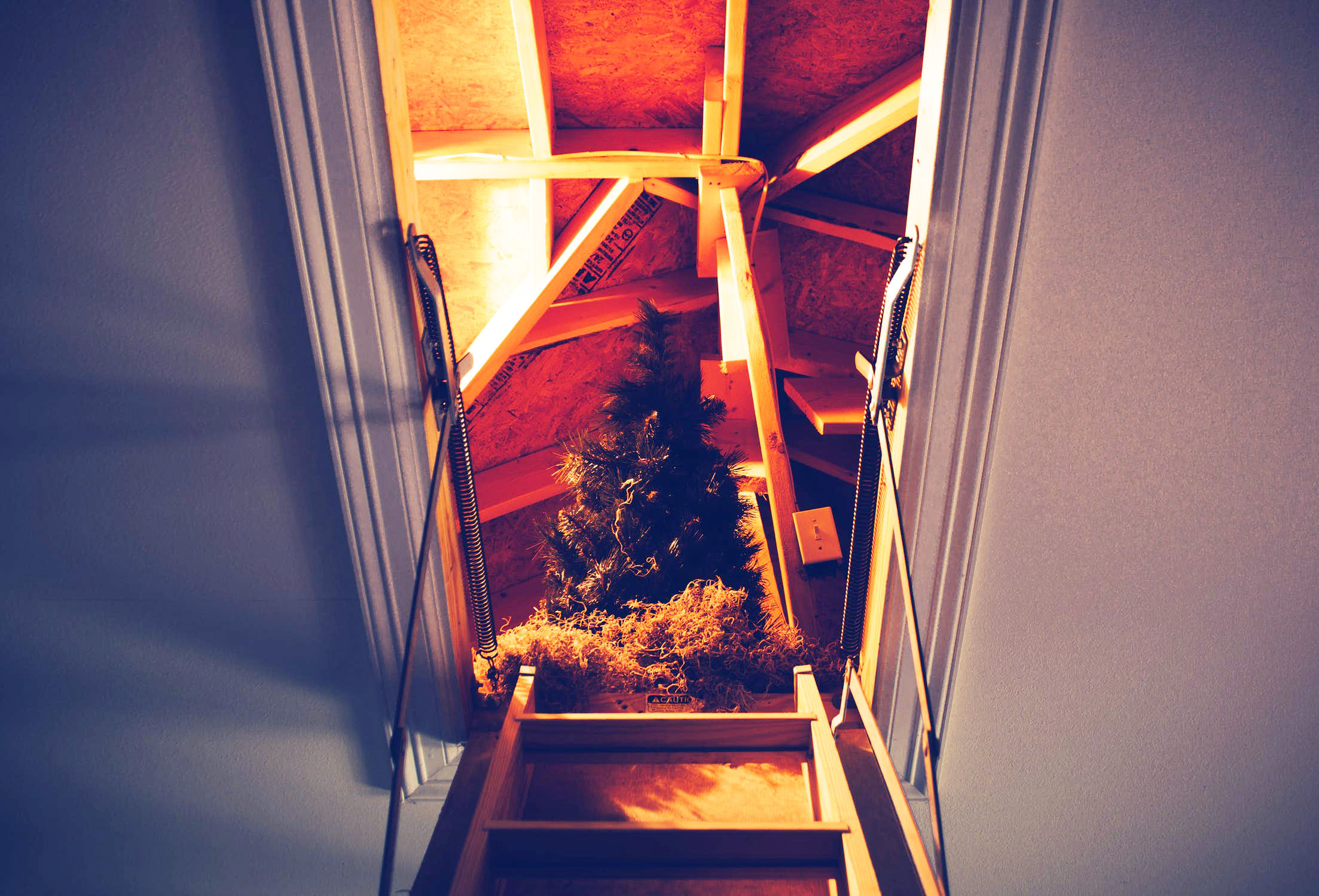 attic holiday storage space